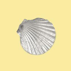 Shell EMF Shield